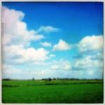 ale_di_gangi_amsterdam_21