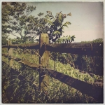 lori_hillsberg_c141_13