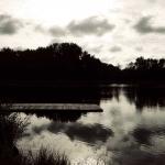 therese_cherton_c177_10