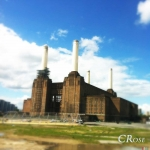 c_rose_battersea-loftus