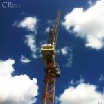 c_rose_crane-loftus