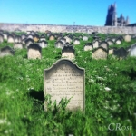 c_rose_whitby-grave-loftus