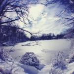 lori_hillsberg_05