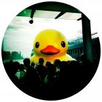 hk_portfolio_cara_gallardo_weil_11