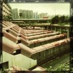hk_portfolio_simon_heard_06