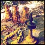 aravind_kaimal_17