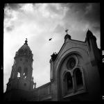 carlos-agrazal_p_07_07
