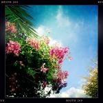ebru_yasit_1411_high