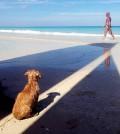 0417-Ilknur-Can-Cuba-00