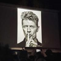 Sebastian-Oskar-Kroll-Bowie-00