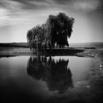 lee-atwell-sacred-lands-portfolio-02