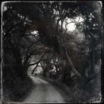 lee-atwell-sacred-lands-portfolio-18