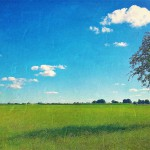 ger-van-den-elzen-digitally-painted-landscapes-16