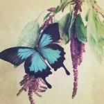 kathleen-magner-rios-uneasy-dreams-21