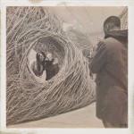 365-susan-anders-02