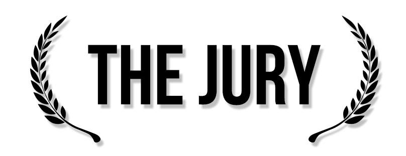 2015-The-jury
