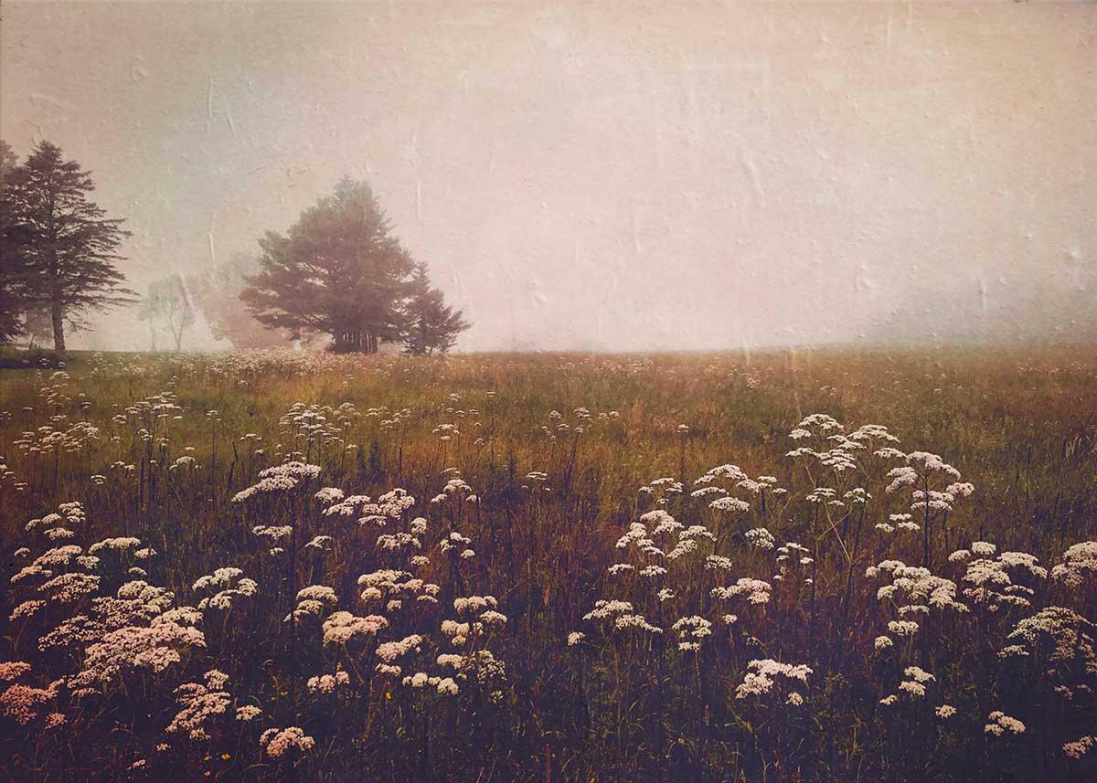 Lydia-Cassatt-Maine-02