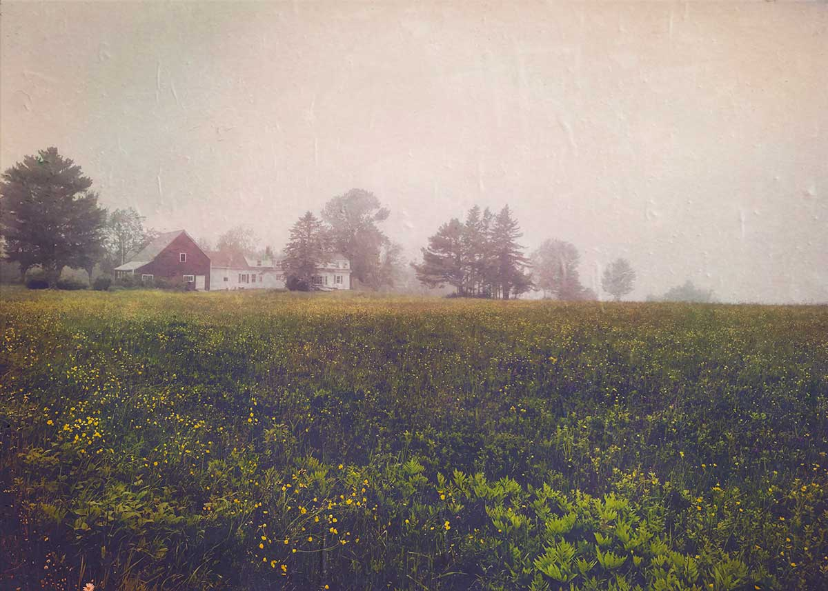 Lydia-Cassatt-Maine-05
