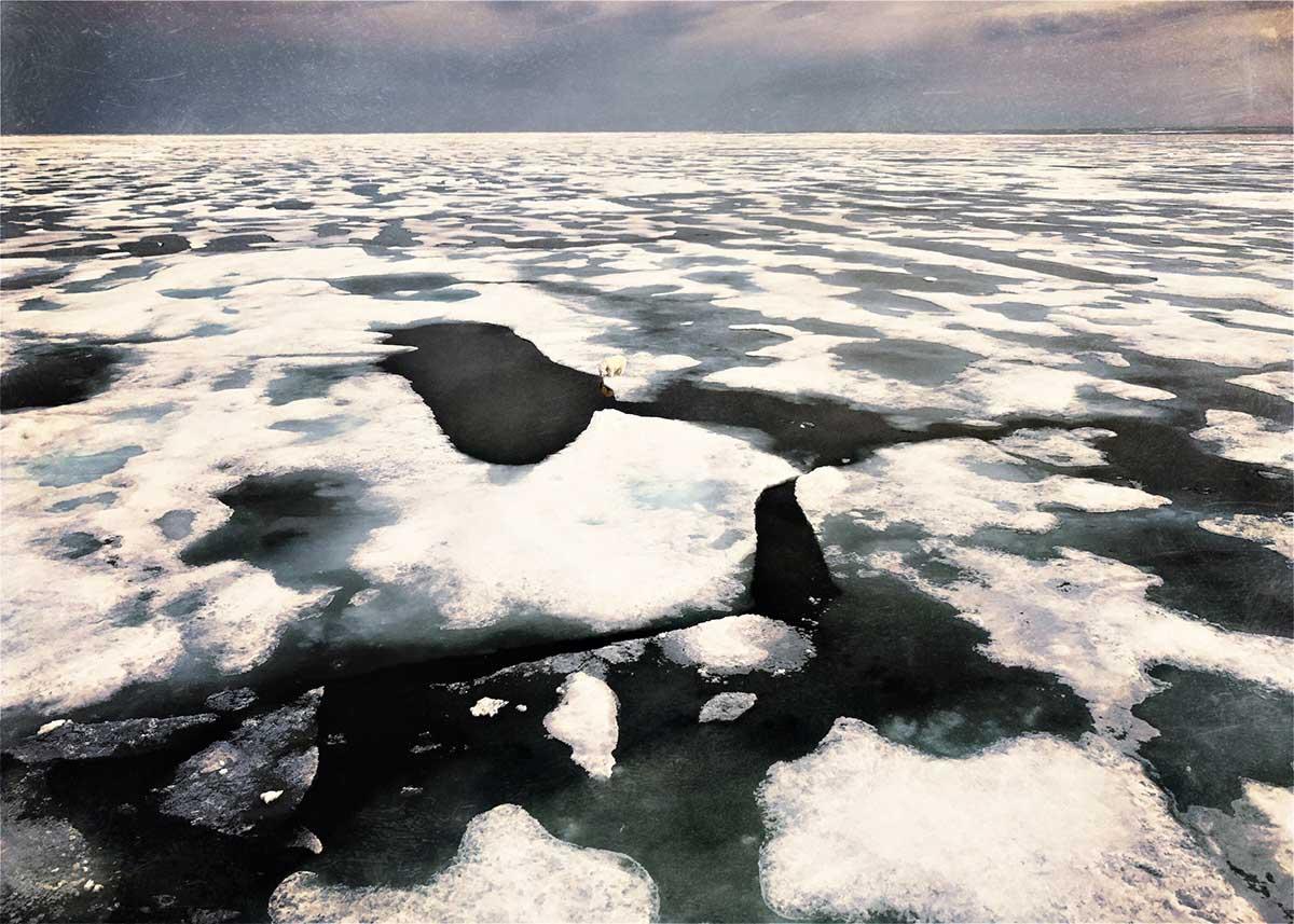 Lydia-Cassatt-Arctic-20