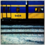 ale_di_gangi_amsterdam_11