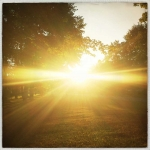 travis_jonathan_sinn_c134_11