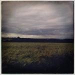therese_cherton_c135_03