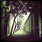 combo_hk_ken_liu_12