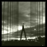 darryl_chapman_bridge_18