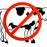 no_animal-icon2