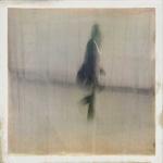 matthew_wylie_minimalist_10