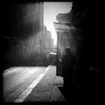 albion_harrison_naish_portfolio_03