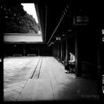 jp_portfolio_alex_f_14