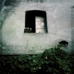 sezgi_olgac_1509