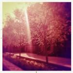 fiona_dufour_c244_03