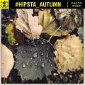 Hipsta_7_Autumn-00