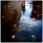 Donna-Donato-Reflections-03