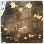 Donna-Donato-Reflections-13