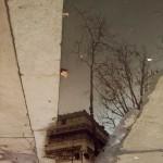 Donna-Donato-Reflections-15