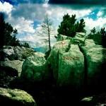 maj-jones-portfolio-01