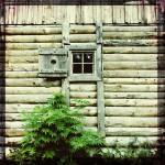 maj-jones-portfolio-04