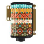 Sequoia ⬆︎