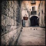 Adriano-Foto-C354-10