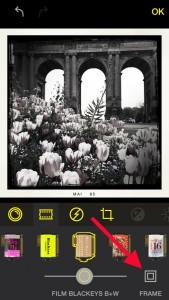 framing-300-01