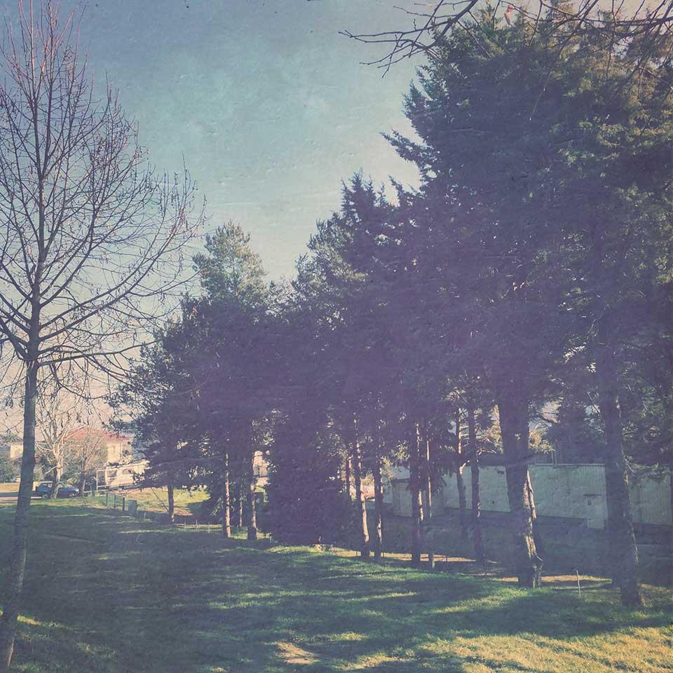 Pier-Francesca-Casadio-C428-13