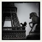 Sabine-Gromek-Paris-02