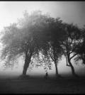 lee-atwell-sacred-lands-portfolio-00