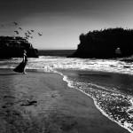 lee-atwell-sacred-lands-portfolio-04