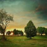 ger-van-den-elzen-digitally-painted-landscapes-04