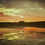 ger-van-den-elzen-digitally-painted-landscapes-08