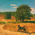 ger-van-den-elzen-digitally-painted-landscapes-13